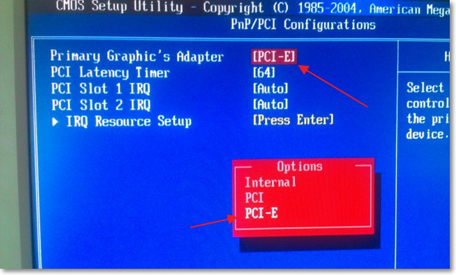 Primary Graphics Adapter